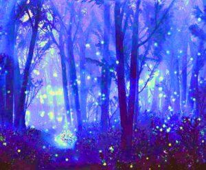 Virtual Class-Public Event-Mystical Forest